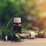 Olio di CBD e benessere del corpo: come utilizzarlo