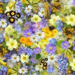 I 10 fiori primaverili